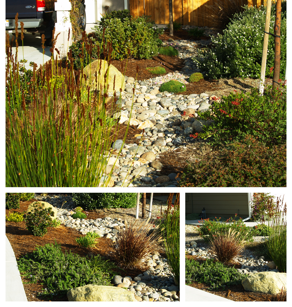 Dry Creek in Drought-Tolerant Garden, Lompoc