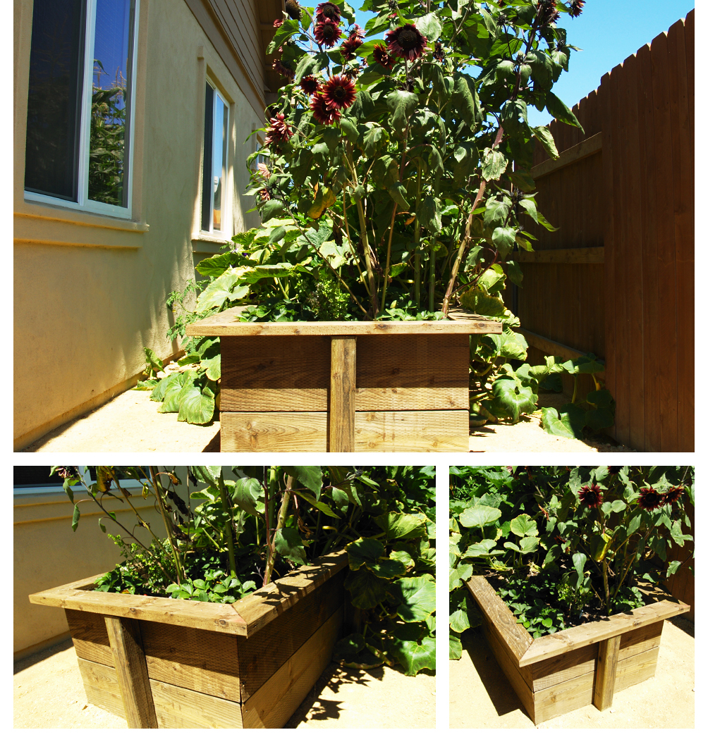 Planter Box at Home's Side, Lompoc